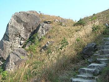 觀景點 西貢 沙田