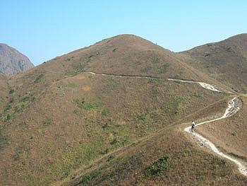 山頂 山坡