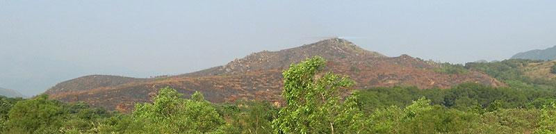 山火 拜山
